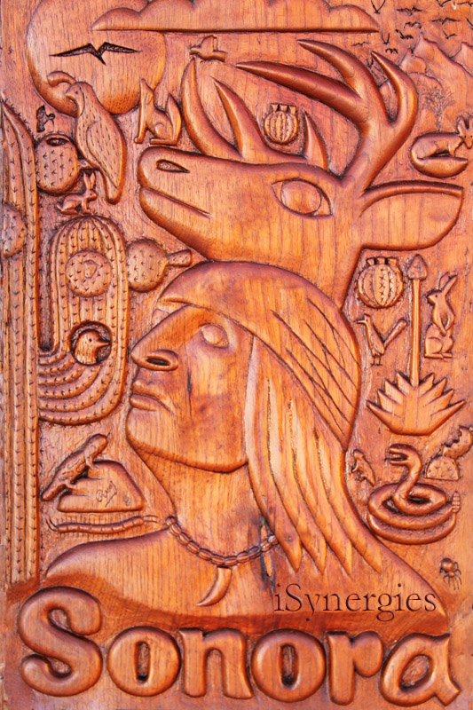Wood carving that features various aspects of Sonoran wildlife and culture